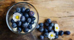 Blueberry and Yogurt Smoothie